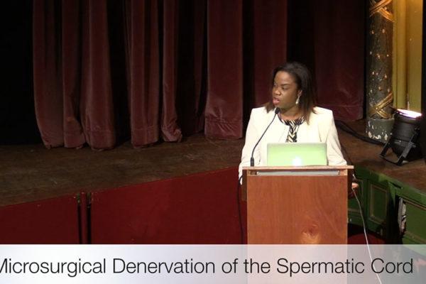 spermatic-cord